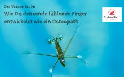 Geschützt: Der Wasserläufer – Spüren wie ein Osteopath