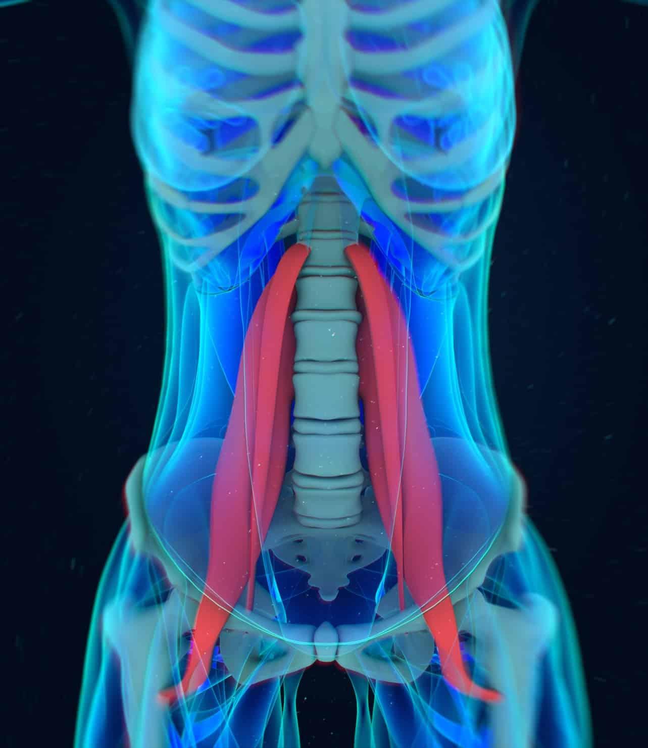 Darm ohne Charme - Rückenschmerzen und dein Darm - Stefan Rieth ACADAMY