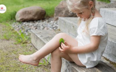Das Wunder Leben in deinem Kind findet Lösungen