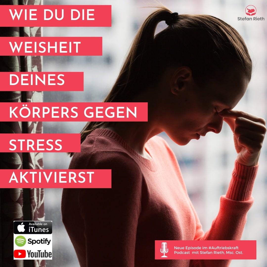 Wie du die Weisheit deines Körpers gegen Stress aktivierst