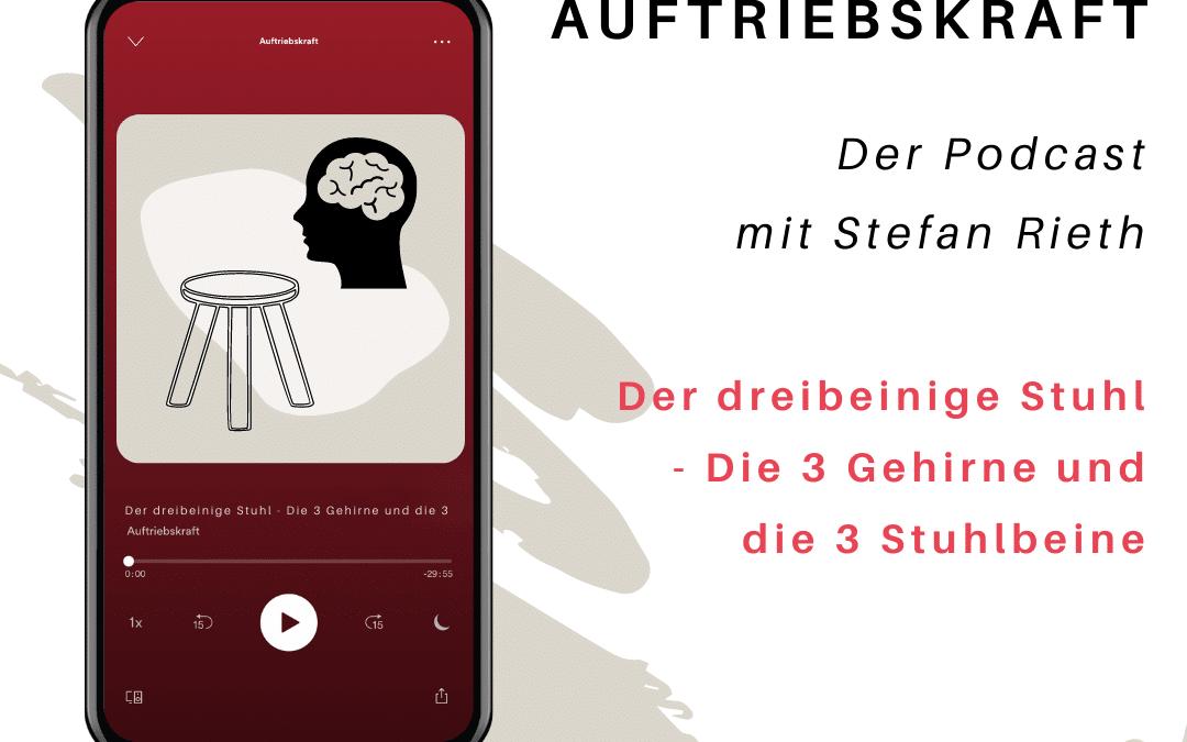 Der dreibeinige Stuhl – Die Drei Gehirne und die drei Stuhlbeine
