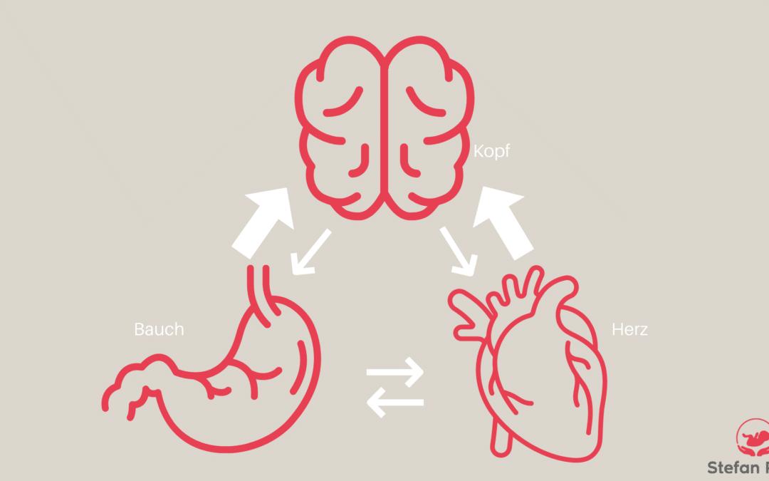 Die drei Gehirne deines Kindes und wie sie miteinander kommunizieren